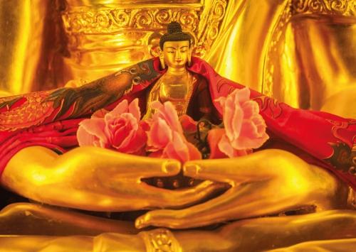 Buddha in Buddhas Hand