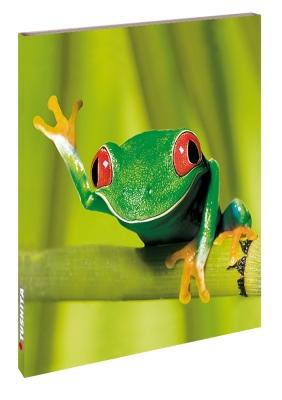 Keep Smiling Frog