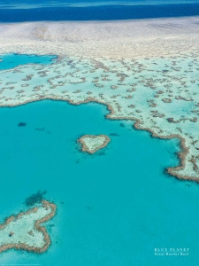 Blue Planet/Great Barrier Reef
