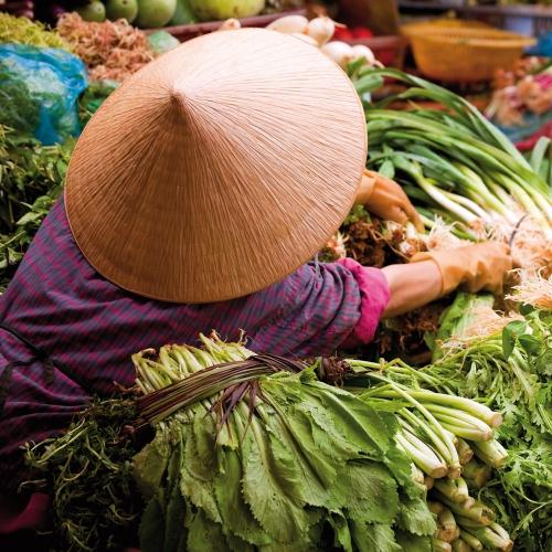 Farmers Markets/Märkte der Welt 2022