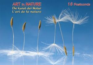 Die Kunst der Natur