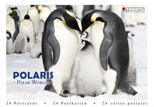 Polaris - Polar Worlds