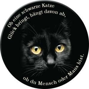 Ob eine schwarze Katze