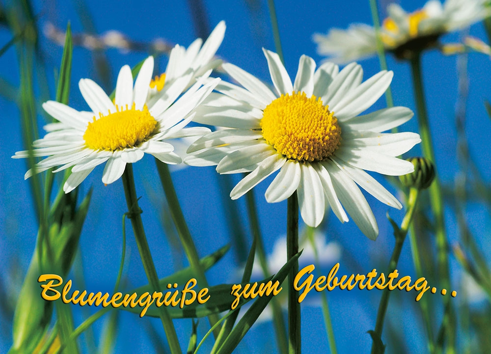 Tushita Verlag Postkarten Tushita Verlag Kalender Postkarten