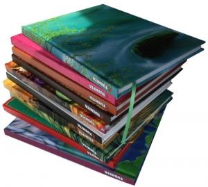 Kandinsky - Verschiedene Teile