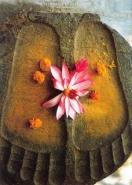 Buddhas Feet