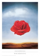 Salvador Dalí - Rose Meditative