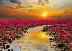 Sunrise, Thailand