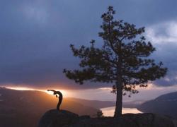 Yoga at Sunrise on Donner summit