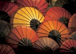 Magic Umbrellas