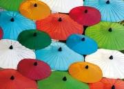 Umbrellas, Thailand