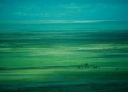 Magical Landscape Lake Kokonor
