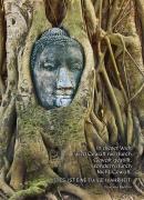 Der Buddha und der Baum