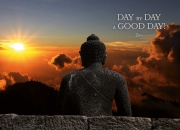 Day by Day...