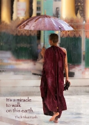 Burmese Monk, Walking in the Rain