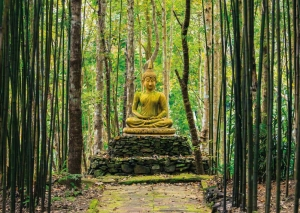 Forest Buddha