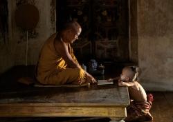 Buddha Still