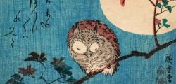 Ando Hiroshige - Small Horned Owl
