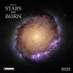 Where Stars are Born 2022