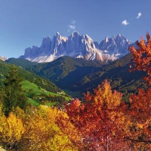 Alps/ Alpen International 2022