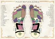 Foot Reflex Zones