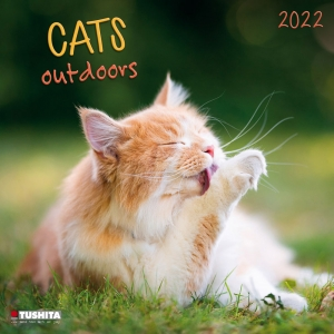 Cats Outdoors 2022