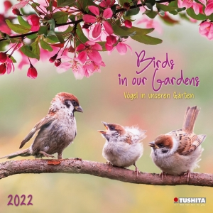 Birds in our Garden 2022