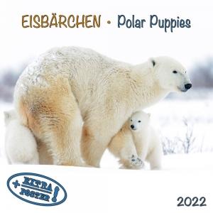 Polar Bears/Eisbärchen 2022