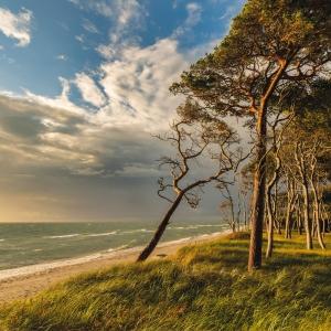 Baltic Sea/Ostsee 2022
