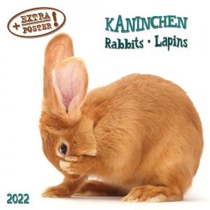 Rabbits/Kaninchen 2022