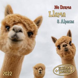 No Drama Llama & Alpacas 2022
