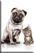 Mops und Katz'
