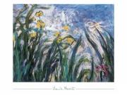 Claude Monet - Iris jaunes et mauves